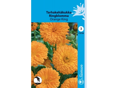 Tarhakehäkukka 'Orange King'